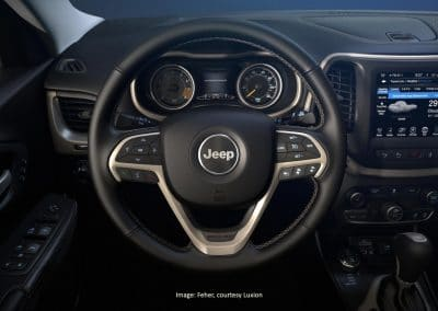 Close Up Steering Wheel-feher